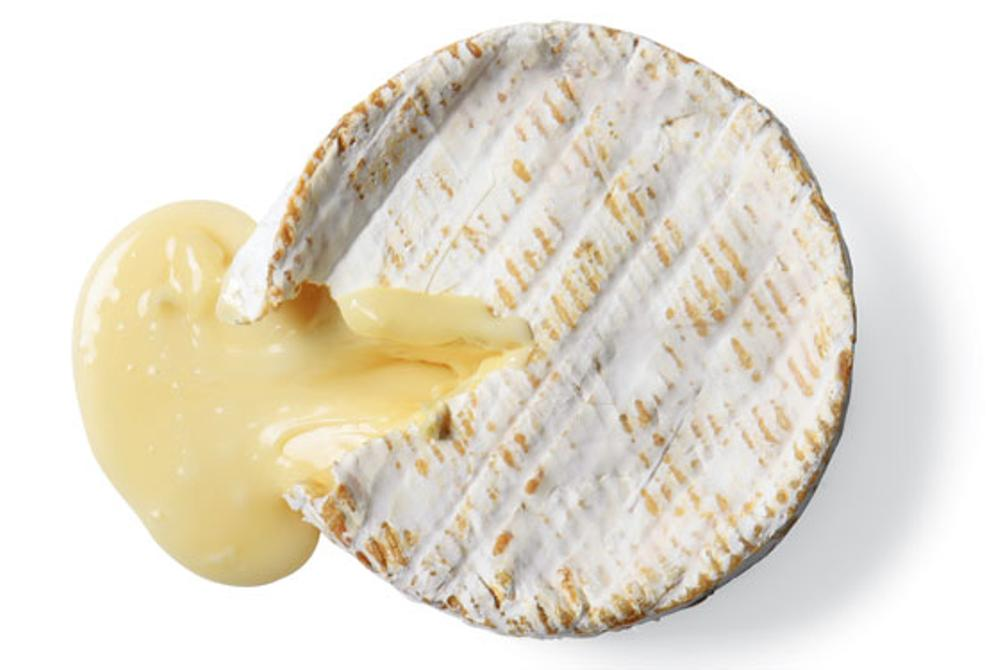 learn-different-types-of-cheese-camembert