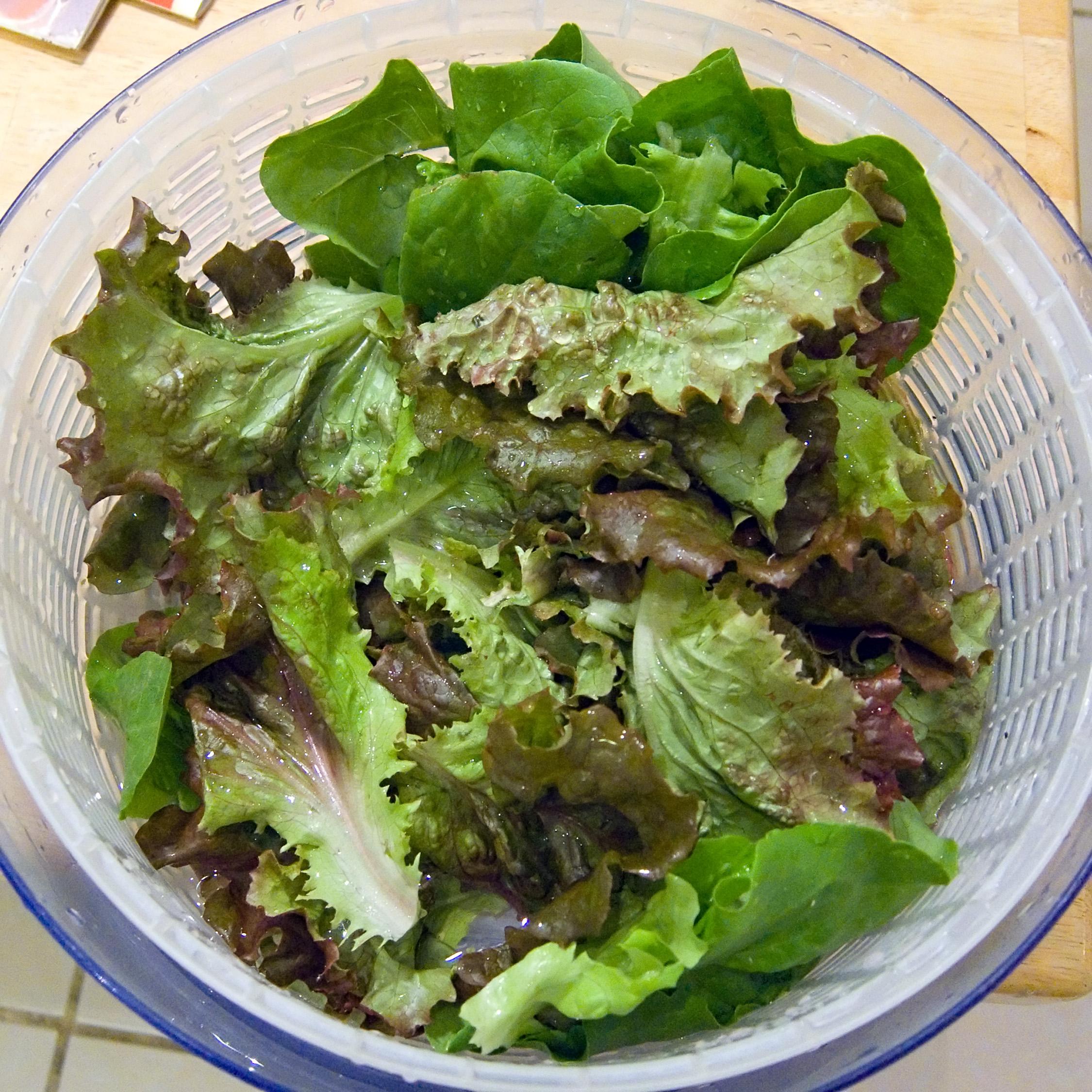 Lettuce Celebrate