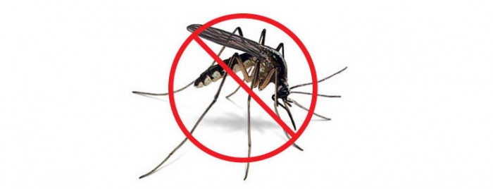 Mosquito Defense 1