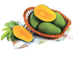 Harum Manis Mangoes