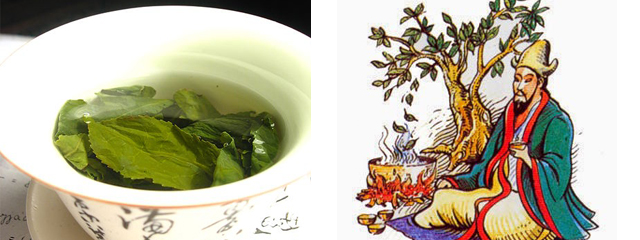 The History of Tea & Health