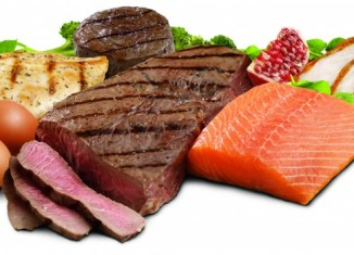Top 10 Sources of Protein