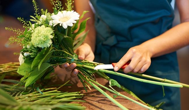 Extend the Longevity of Flowers