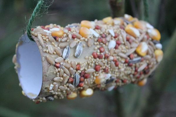 Easy to Make Bird Feeder