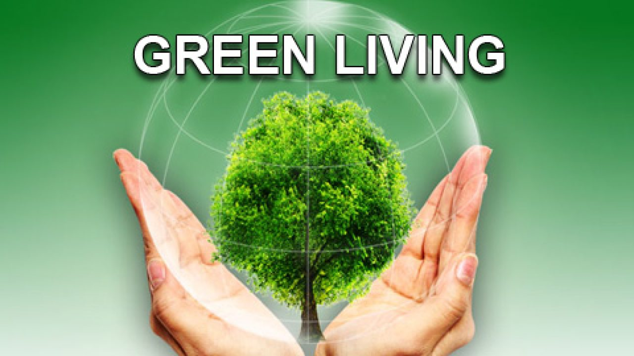 12 Practical Tips for a Greener Living - Indoindians.com