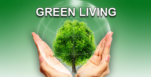 12 Practical Tips for a Green living