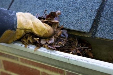 Fall-Cleanup-Leaves-in-Gutter-XL--10101