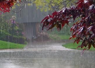Preparing for The Rainy Season