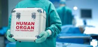 Gift of Life with Organ Donation by Priya Agarwal