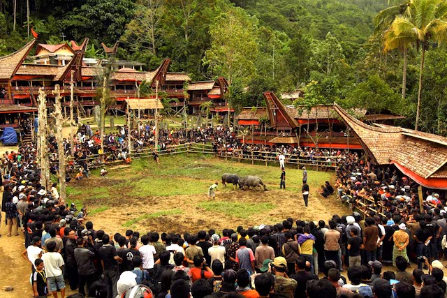 The Crowds at Festival Rambu Solo, Tana Toraja