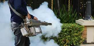 5 Recommended Pest Control Services in Jakarta