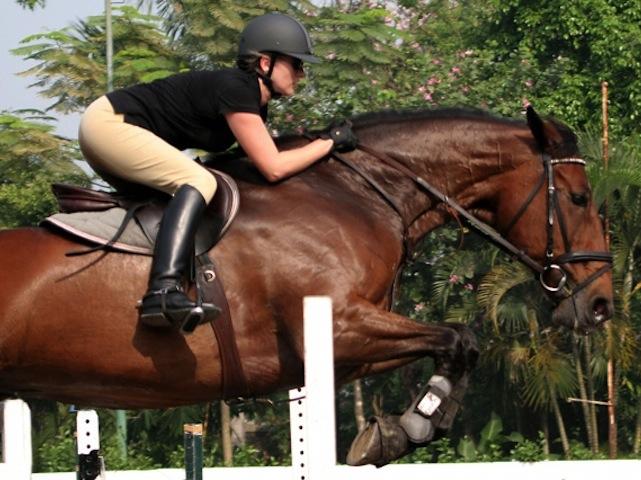 trijaya-equestrian