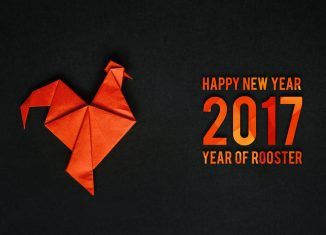Chinese Horoscope Predictions for 2017 Year of the Red Rooster - Part 2