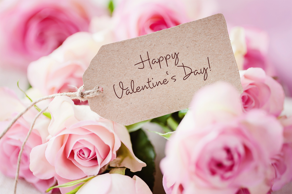 Valentine's day is coming up – a day to celebrate love and friendship!