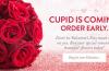 Indoindians Weekly Newsletter: Celebrating Love on V-Day