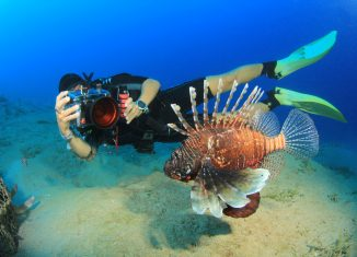 A Guide to Underwater Photography for Beginners