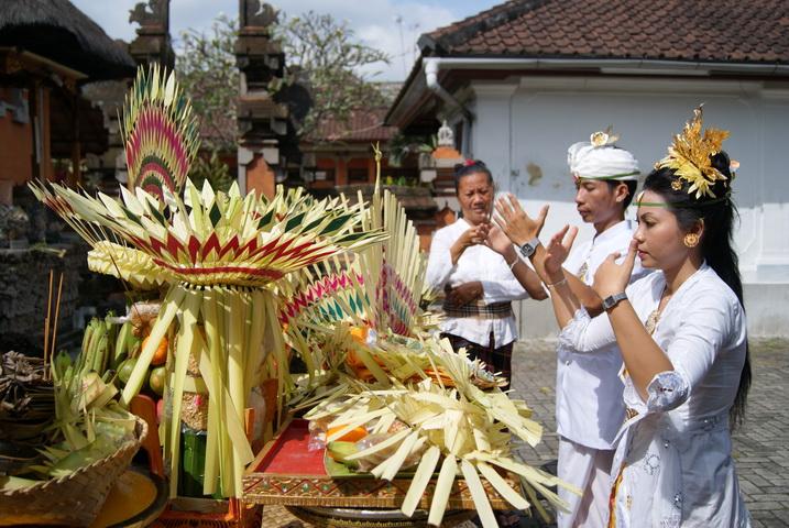 Balinese Bali