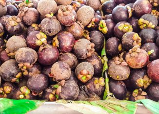 The Queen of Fruit: Mangosteen