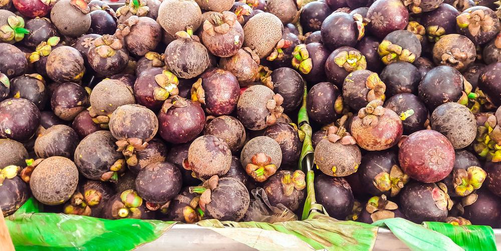 The Queen of Fruit: Mangosteen