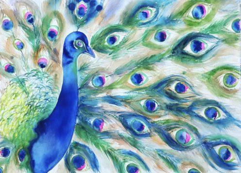 Peacock by Vasundara