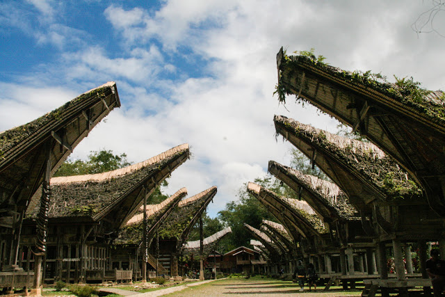 Tongkonan Torajan traditional houses