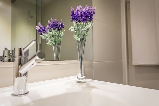 5-selection-of-mood-boosting-flowers-for-your-house-room-lavender-bathroom