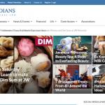 Indoindians new site look