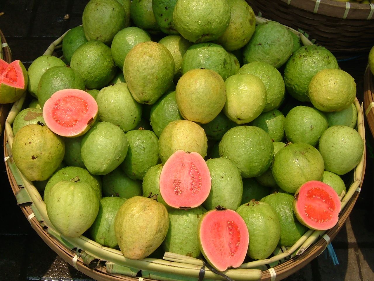 Guava Pink in a Basket