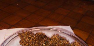 Antioxidant and immunity boosting chocolate recipe by Geeta Seth