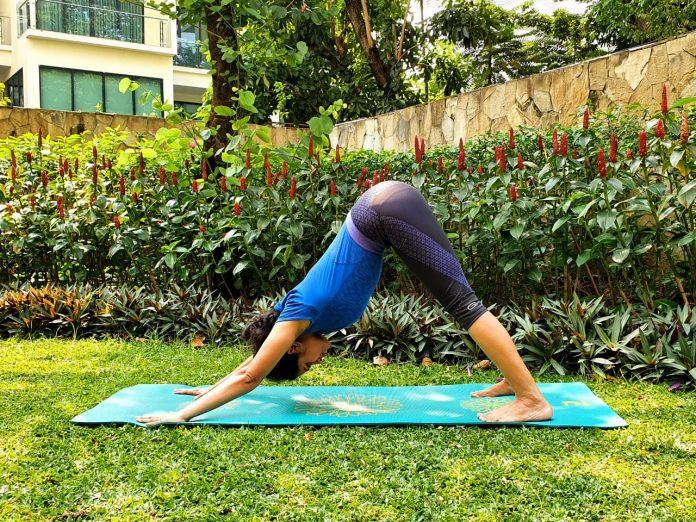 Indoindians Yoga Challenge Day 4 URDHVA MUKHA SVANASANA