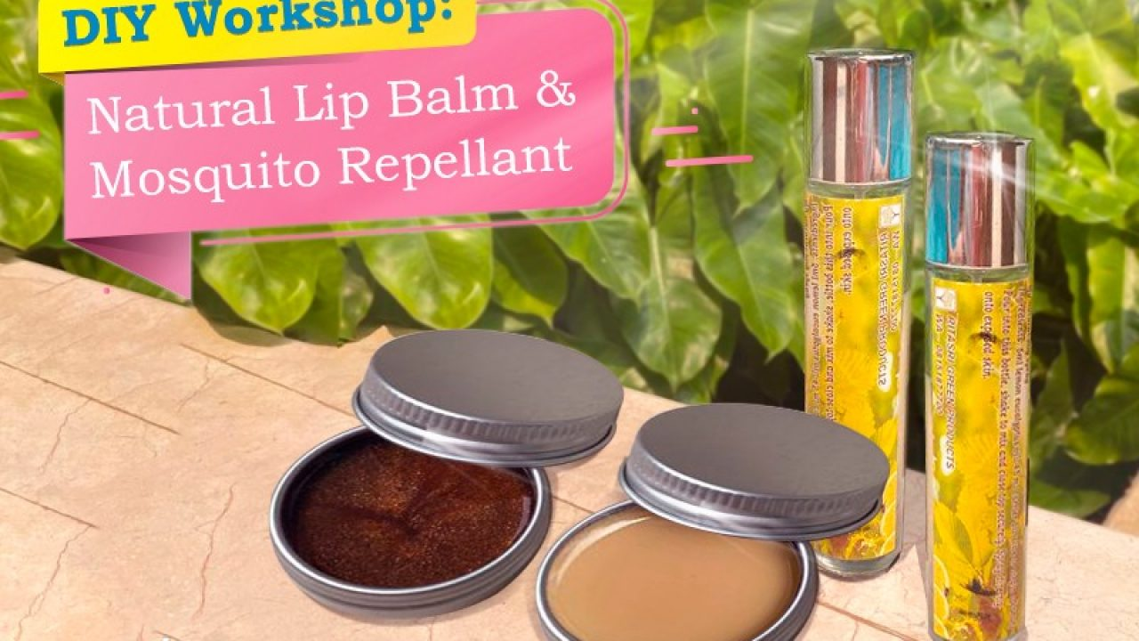 Diy Workshop On Natural Lip Balm Mosquito Repellent With Rita Srivastava Indoindians Com,Colors That Will Make You Sleepy