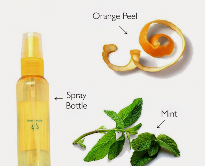 Homemade Orange Peel and Mint Facial Toner by Geeta Seth