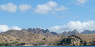 Wonderful-Indonesia-Diving-Sites-in-Flores