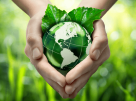 Indoindians Weekly Newsletter: Are You A Green Activist?
