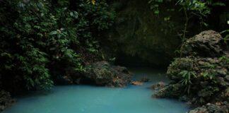 5 Fun Locations in Pangandaran, West Java: Cagar Alam Pananjung